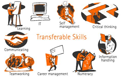 Qualifications and skills to put on a resume